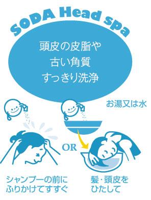 頭皮の皮脂や 古い角質 すっきり洗浄