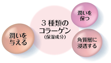 3種類のコラーゲン
